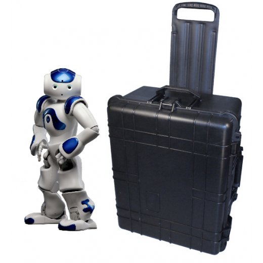 Carrying case for Aldebaran NAO robot